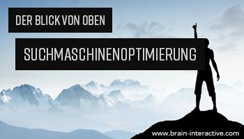 """Eine Werbeanzeige für die Online-Agentur BRAIN-interactive. Auf ihr ist der Text """"Der Blick von oben Suchmaschienenoptimierung www.brain-interactive.com"""" zu lesen. Der Hintergrund zeigt einen Mann, der auf der spitze eines Berges steht und mit erhobenen Daumen nach oben zeigt."""