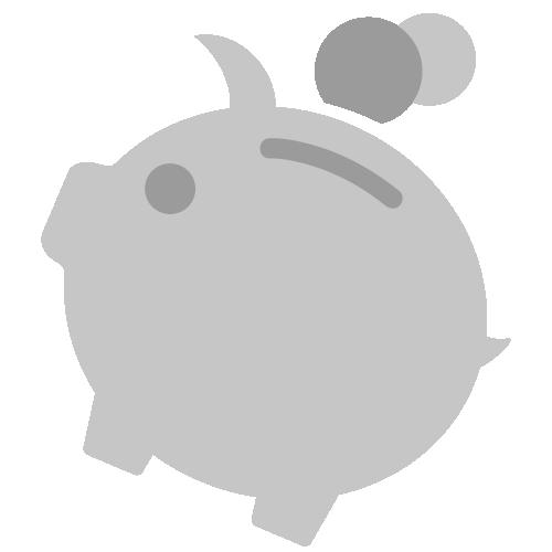 Vereinfacht dargestelltes Sparschwein mit Münzen als Piktogramm