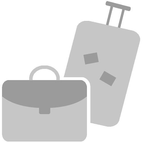 Vereinfacht dargestelltes Reisegepäck als Piktogramm